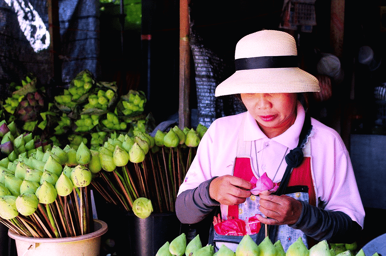 #North Thailand Chiang Mai to Chiang Rai Tour