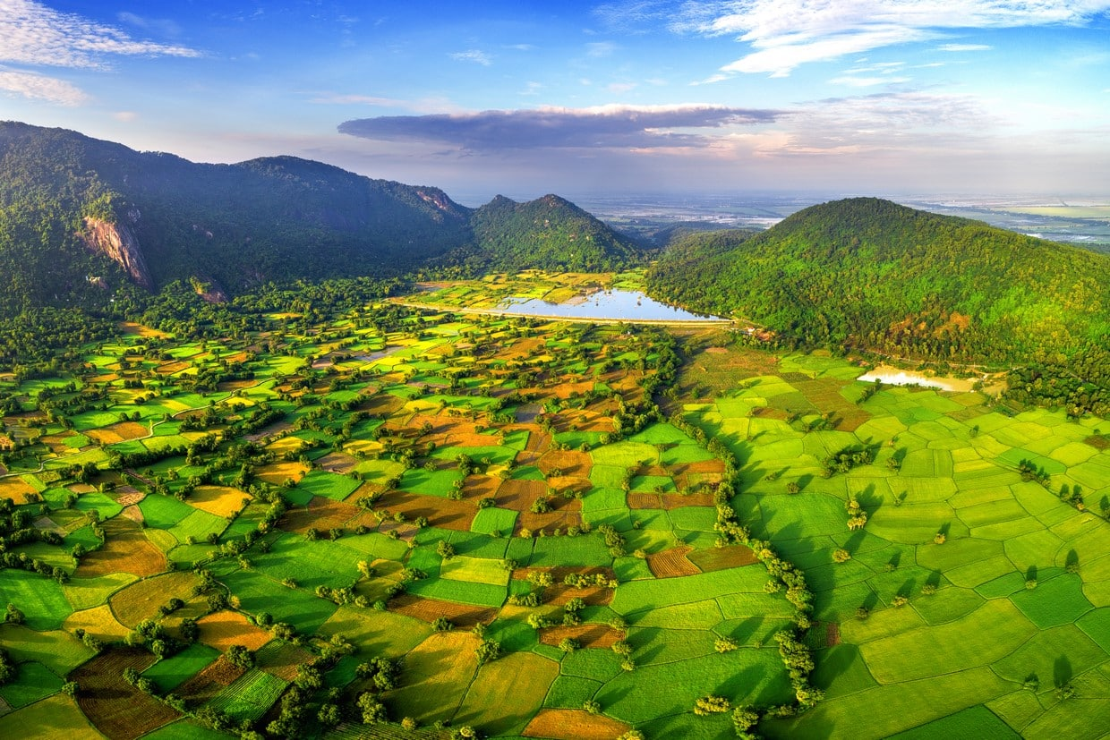Aerial view of rice fields in Mekong Delta, Tri Ton town, Vietnam.