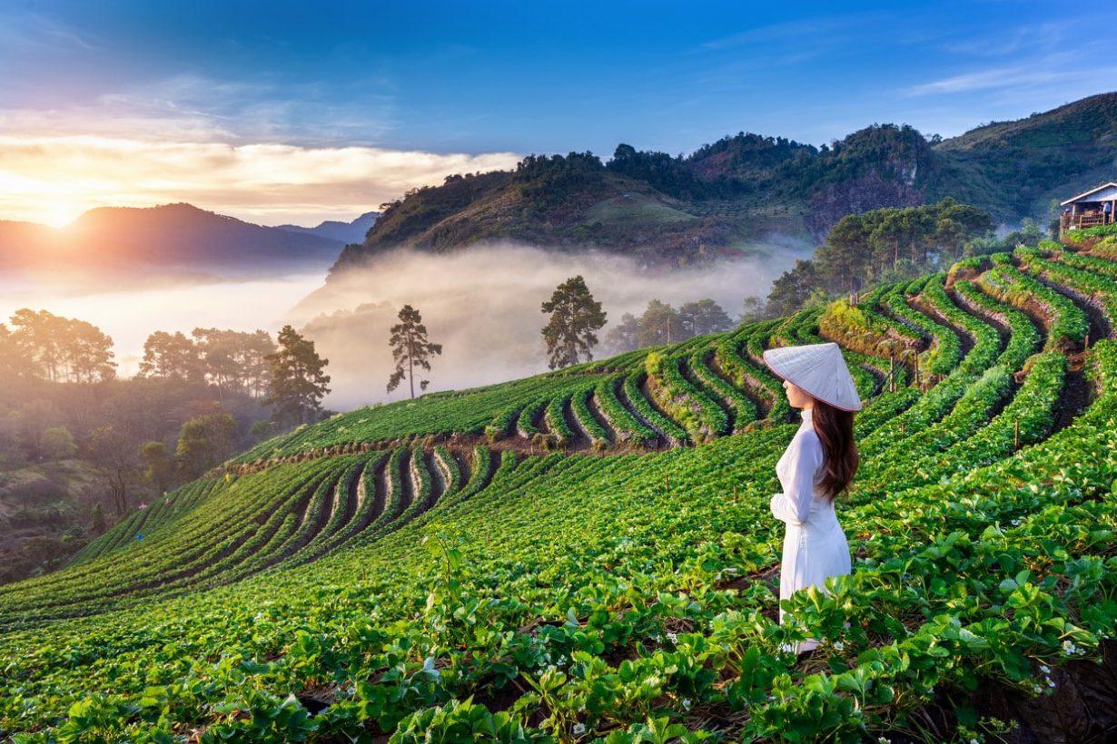 #Northern Thailand Tour