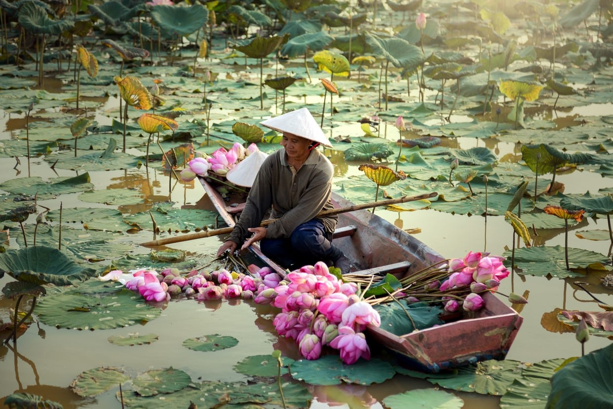 Explore Vietnam From South To North