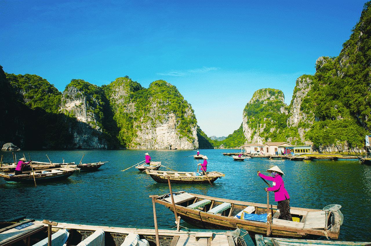 #Special Vietnam