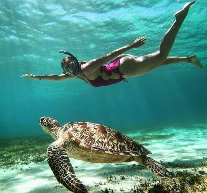 Honeymoon in Madagascar 4