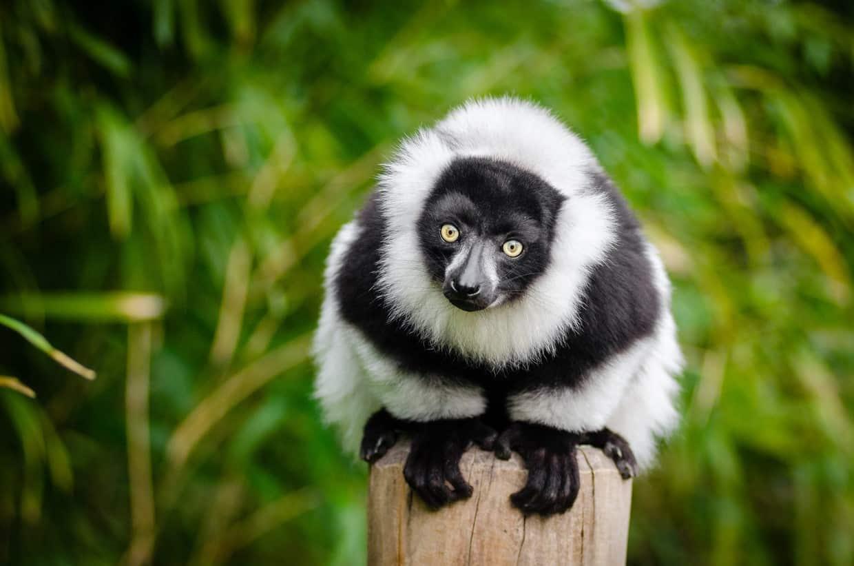 South Madagascar Discovery Tour 5