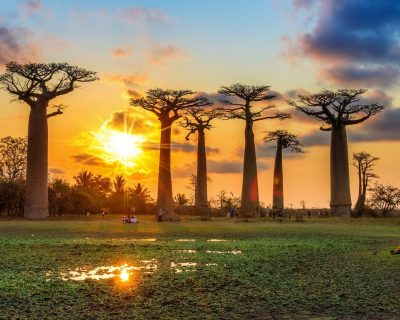 #Baobabs and Tsingy