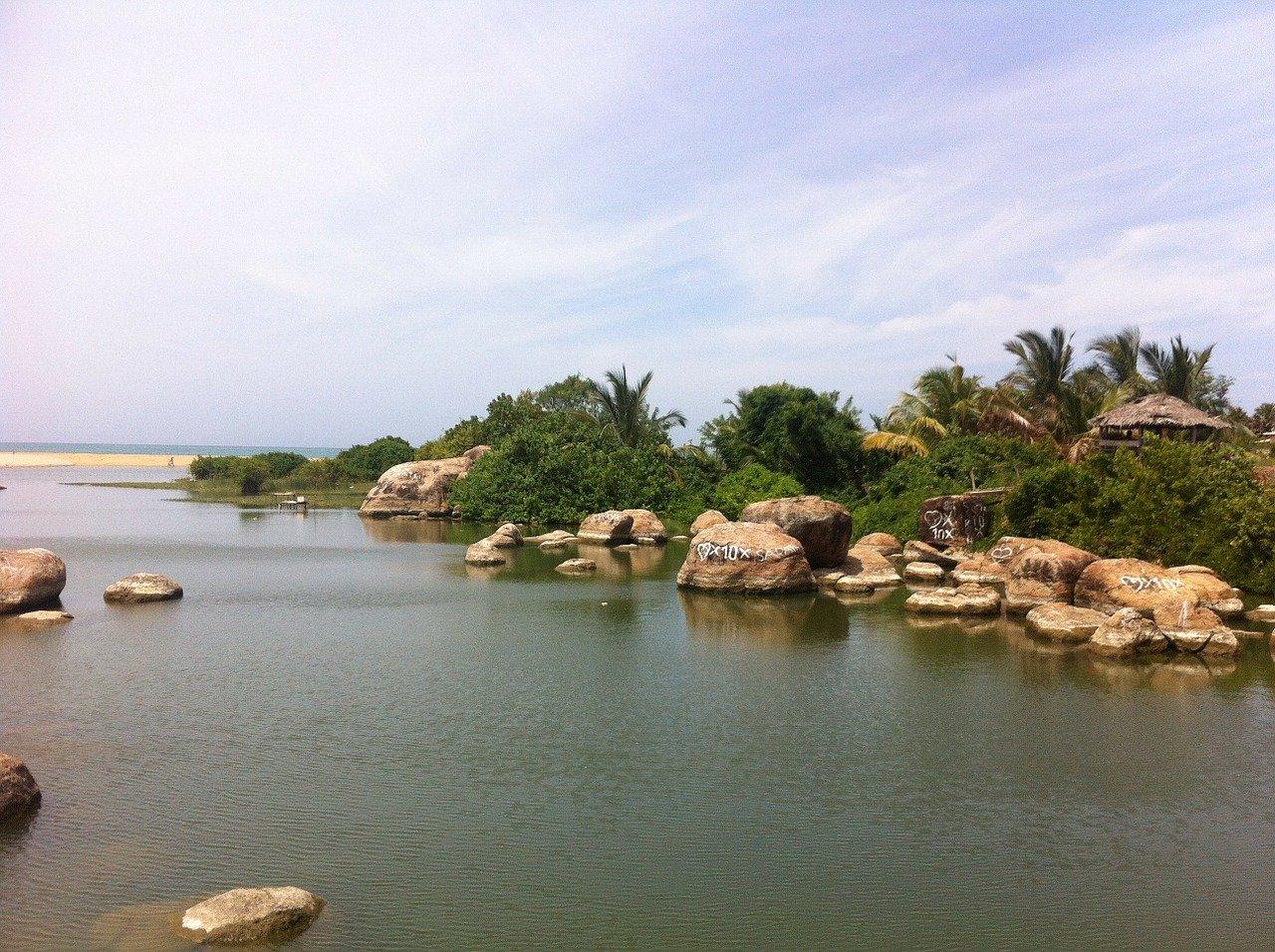 Madu River Boat Safari 5
