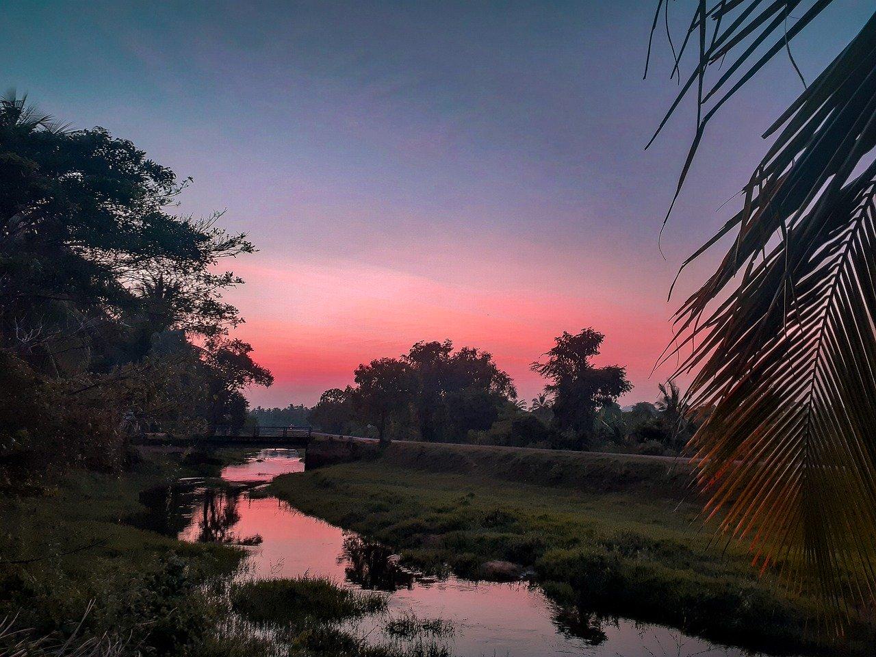 Madu River Boat Safari 3