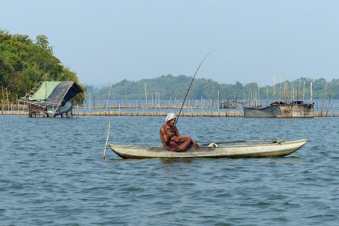 Madu River Boat Safari 1
