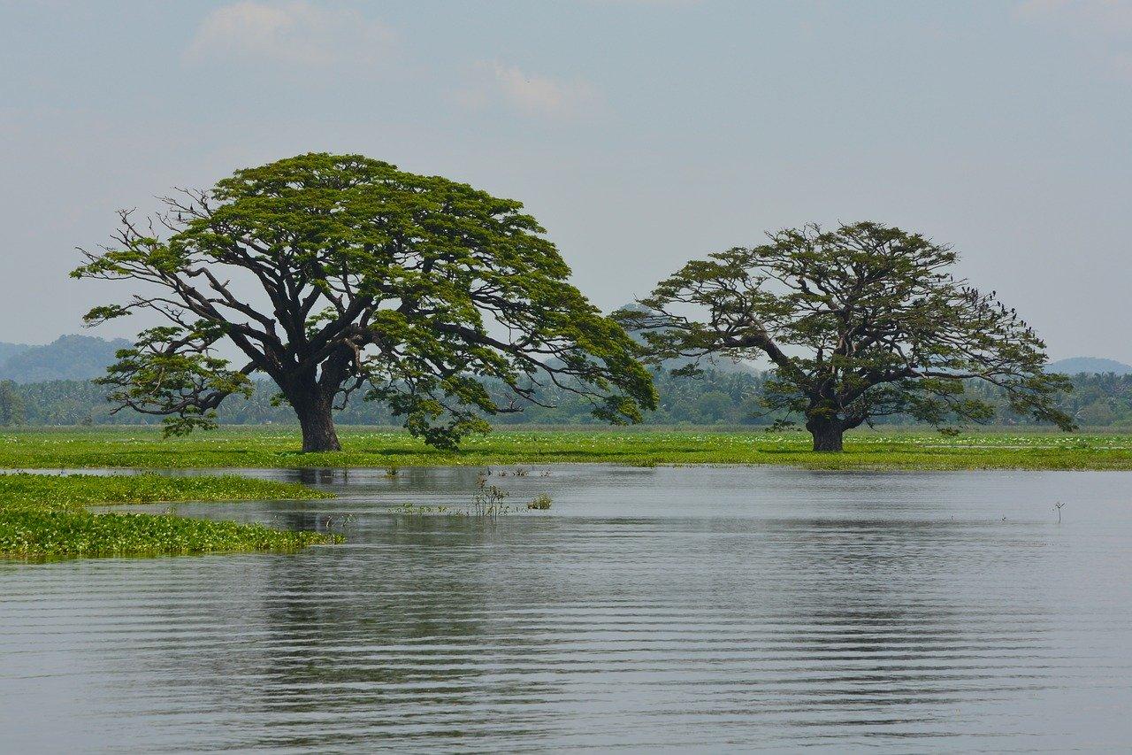 Sembuwatta Lake Day Tour 3