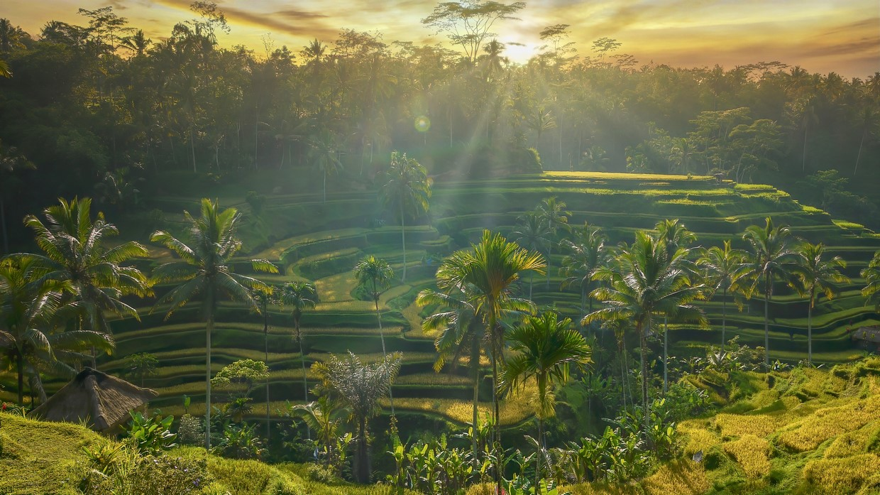 Bali and Gili Islands Tour Package (All-Inclusive Deal) 11