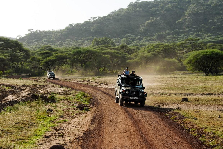 Highlights of Tanzania Safari - Tarangire - Serengeti - Ngorongoro 2