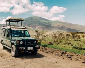 #Tanzania Wildlife Safari Tour