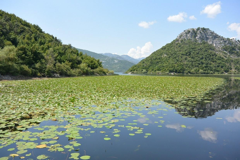 New Year in Montenegro 3