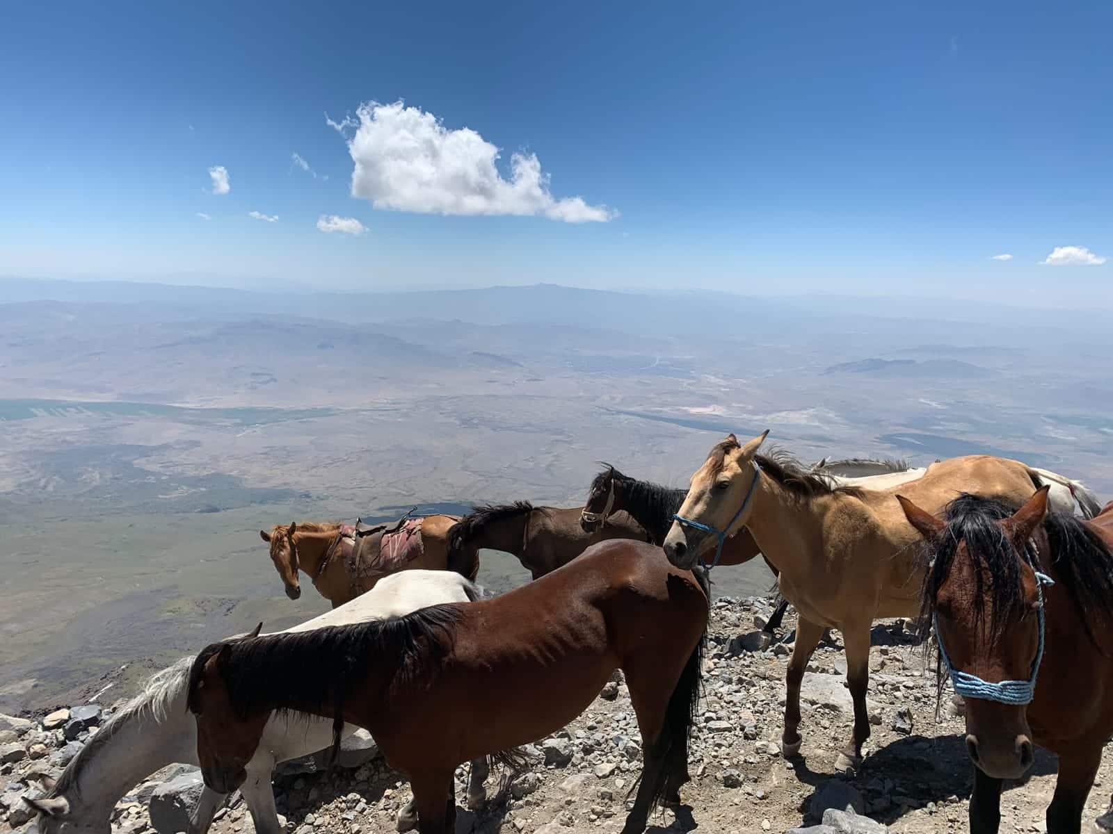 Mount Ararat Hiking Tour 3