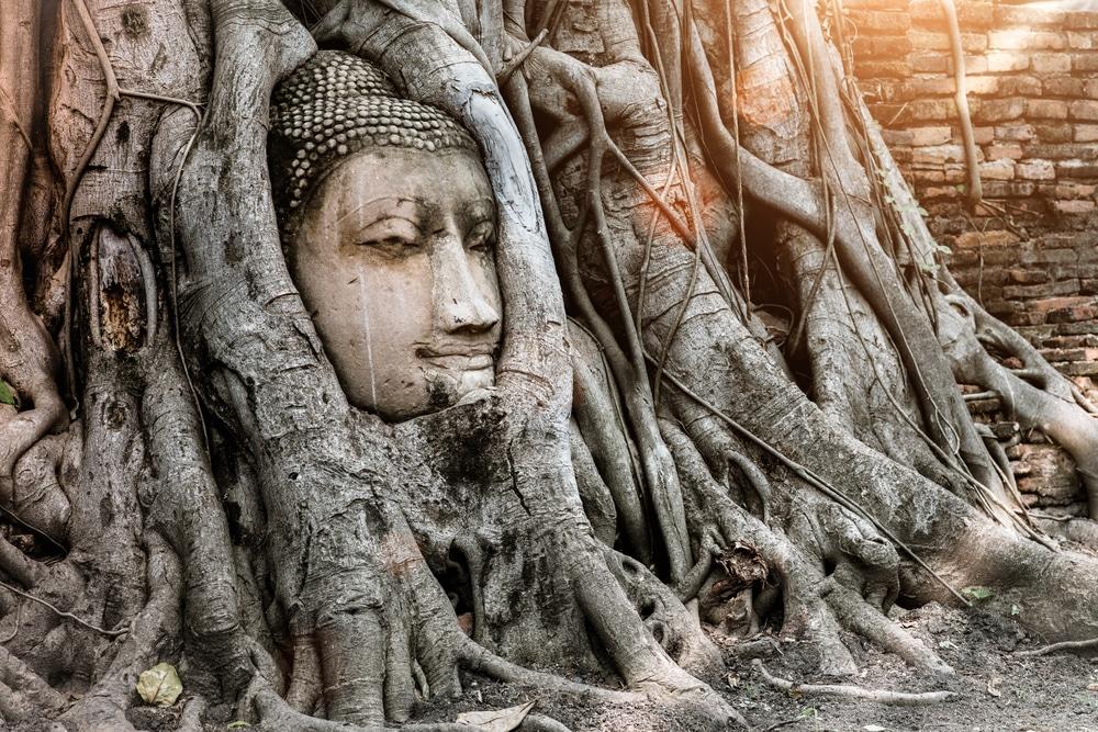 Ayutthaya Day Tour 4