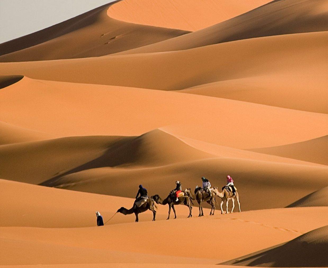 Tangier - Chefchaouen - Erg Chebbi and Marrakech 6