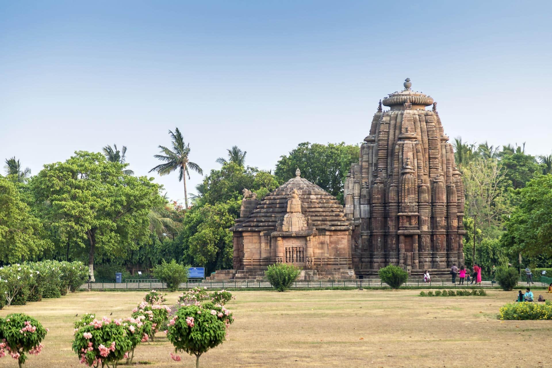 Odisha Temples & Sundarbans Delta 7