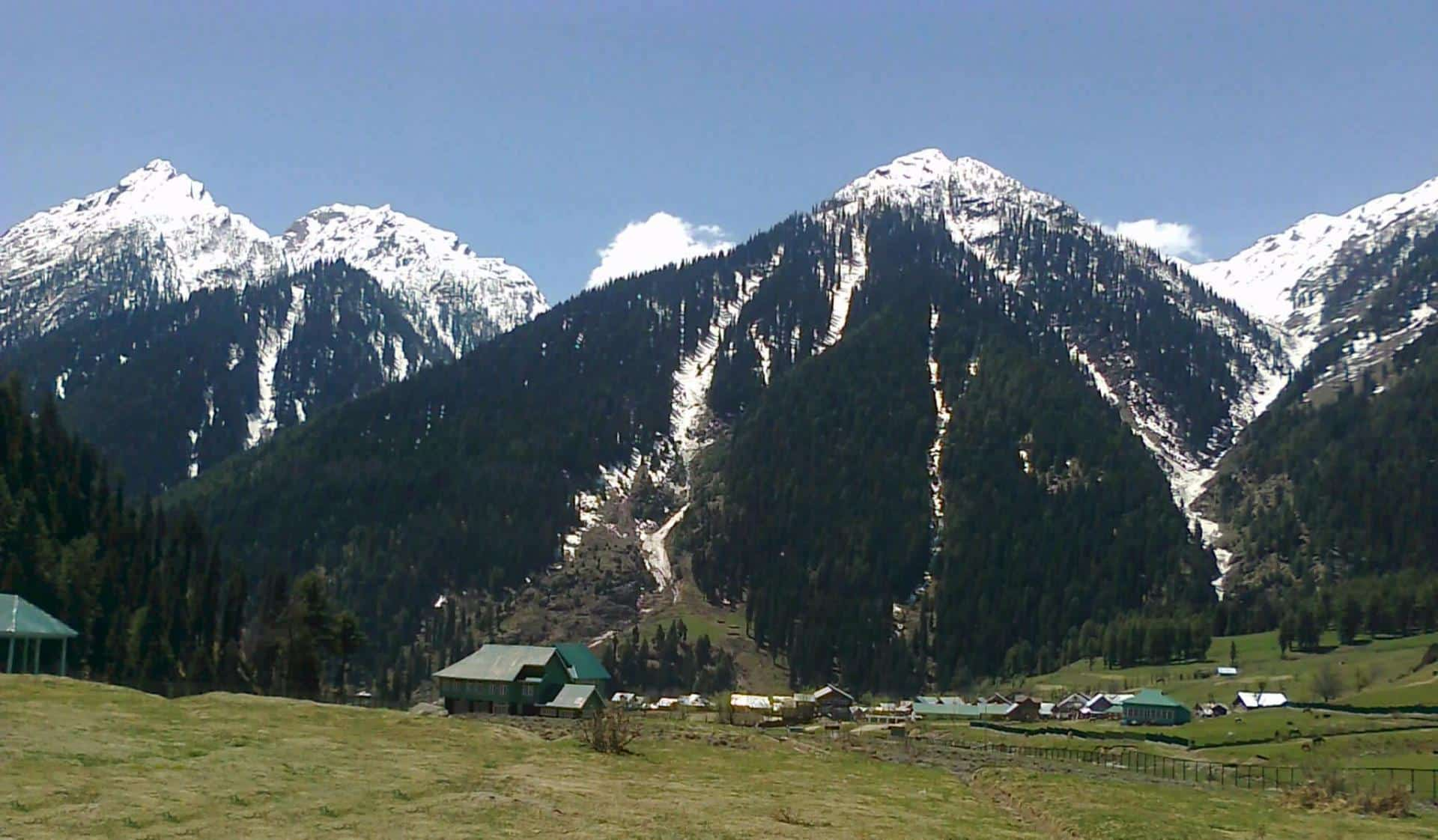 Delhi, Dharamshala, Kashmir Valley & Amritsar Tour 6