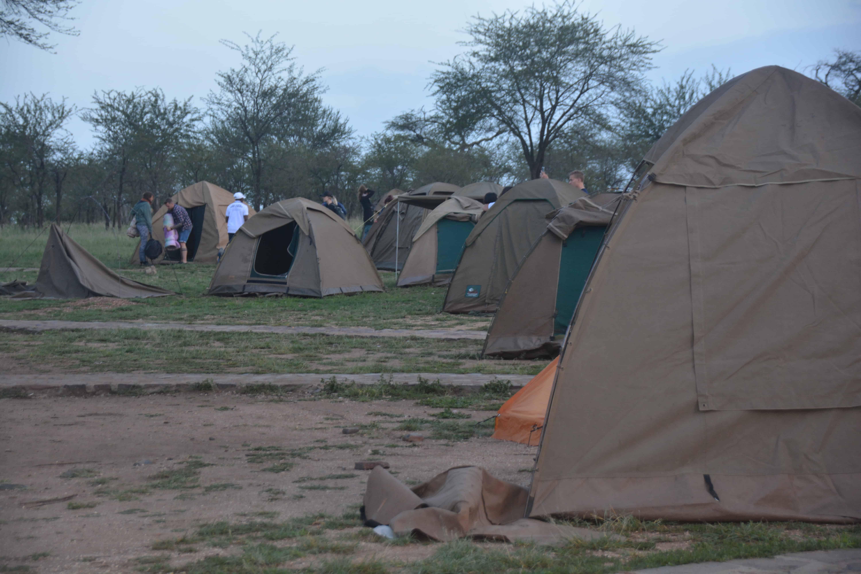 8 Days Tanzania Safari Tour 4