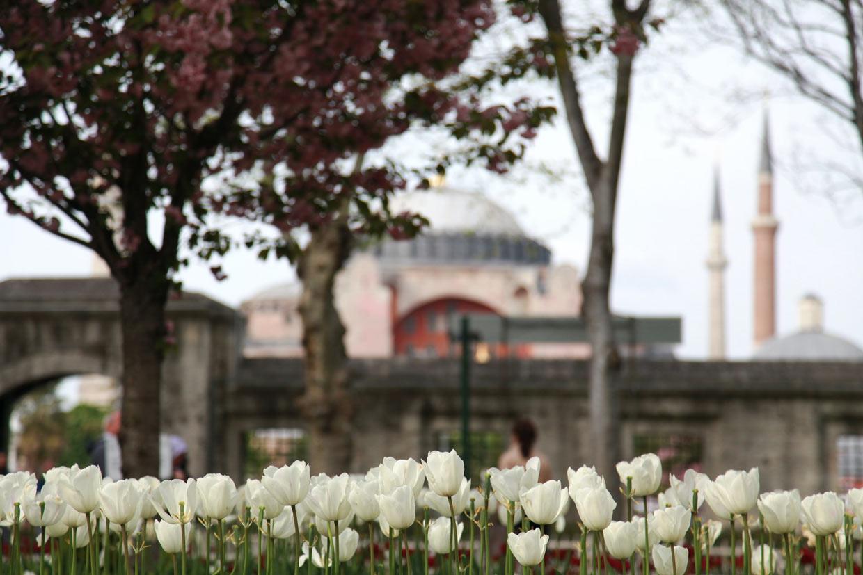 Haiga Sofia Mosque