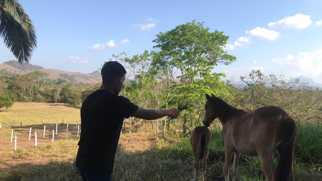 West Panama Agro Exploration 3