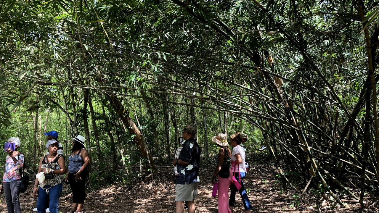 West Panama Agro Exploration 4