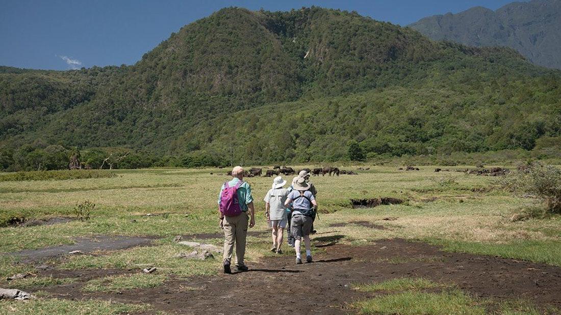 3 Days Arusha, Tarangire and Ngorongoro Crater 2