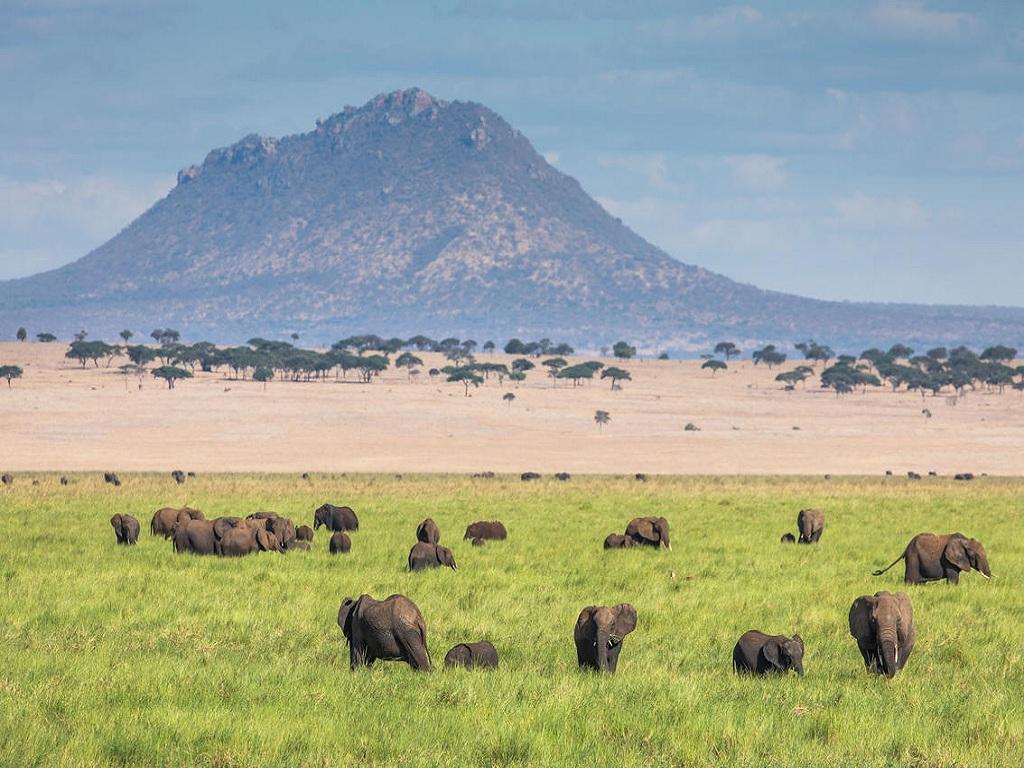 Short Safari to Tarangire, Lake Eyasi and Ngorongoro Crater 3