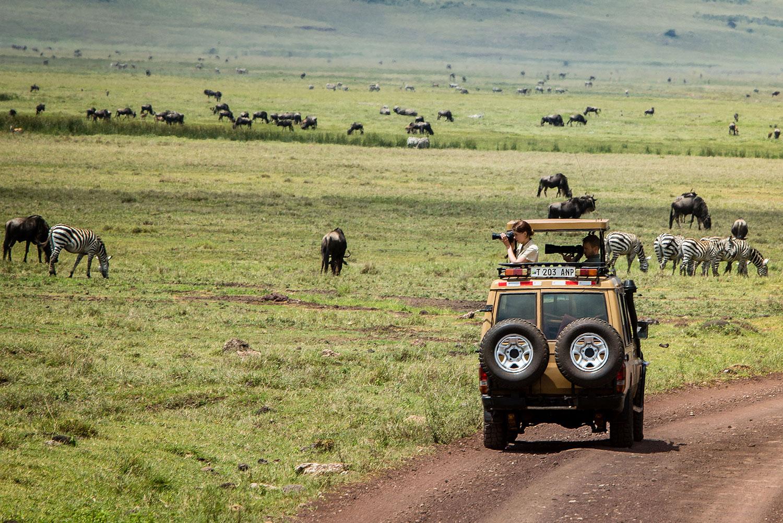 3 Days Arusha, Tarangire and Ngorongoro Crater 6
