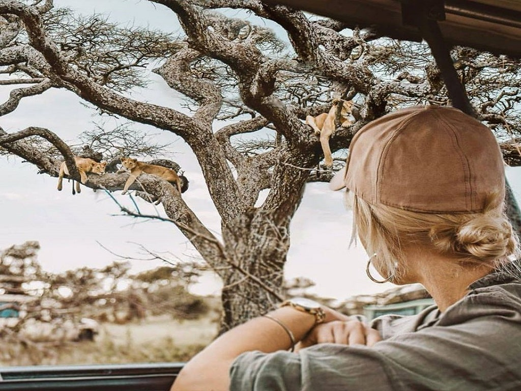 Tanzania Classic Safari - Tarangire, Serengeti & Ngorongoro crater 1