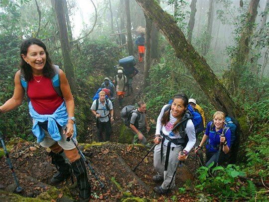 8 Day Kilimanjaro Climb - Machame Route 3