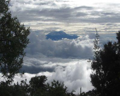 #Kilimanjaro Mount