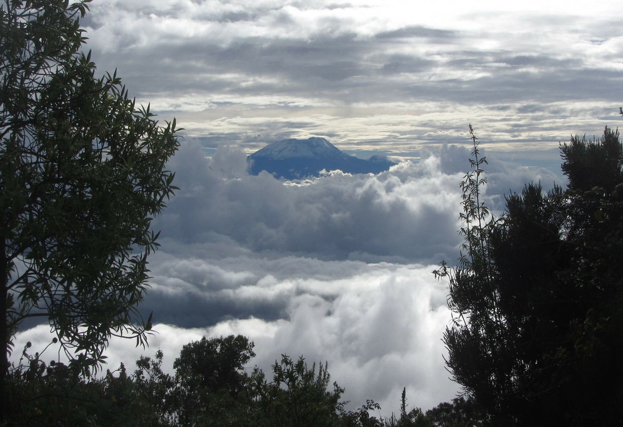7 Days Kilimanjaro Mount Rongai Route