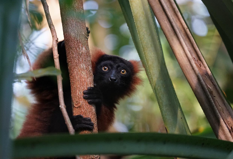 South Madagascar Discovery Tour 9