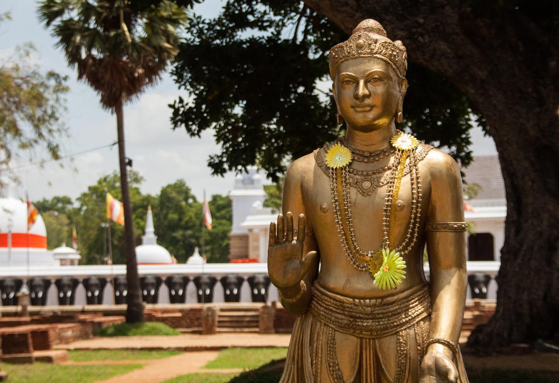 A Week in Sri Lanka 9
