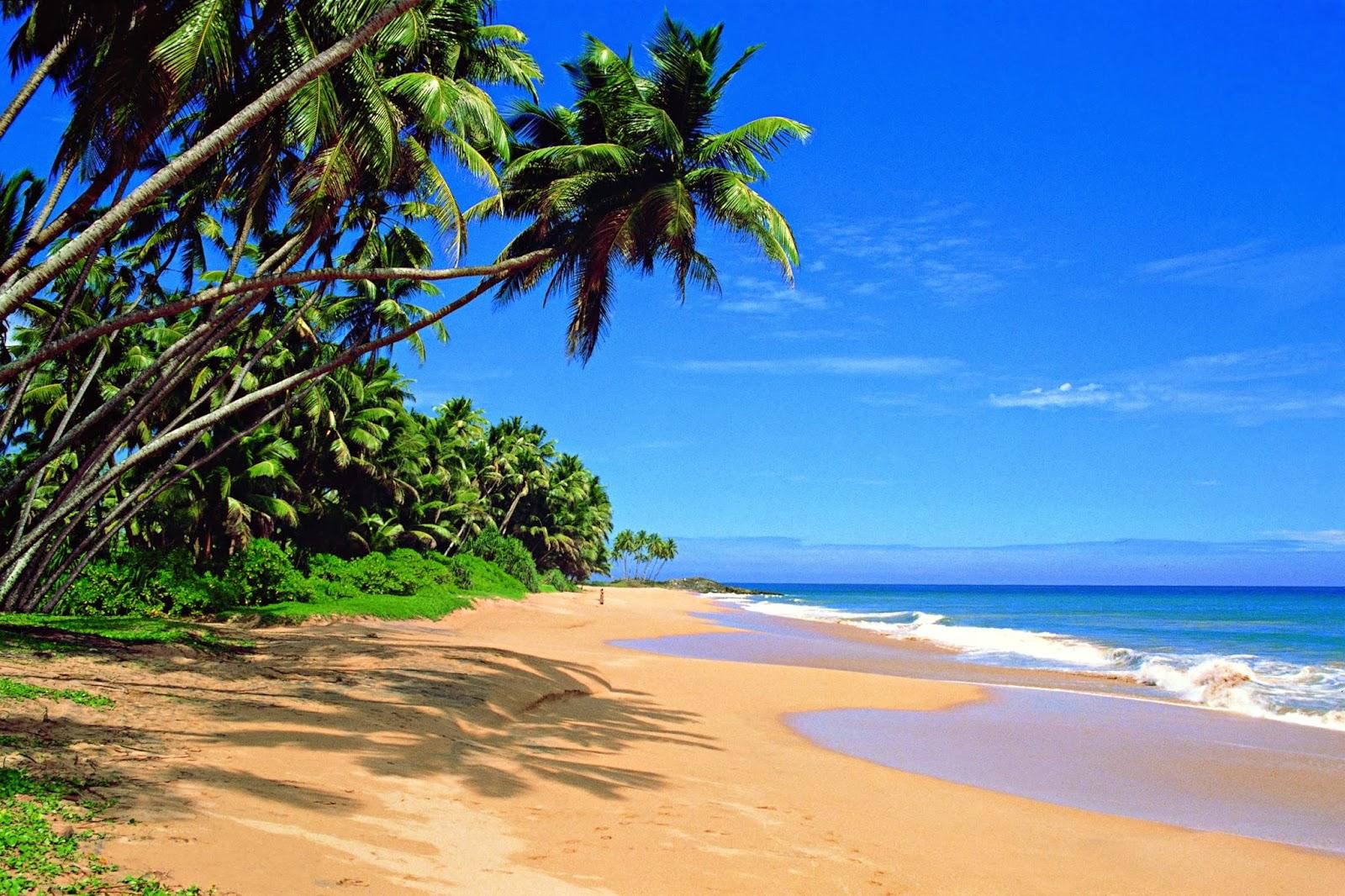 Sri Lanka Luxury Honeymoon Tour 4