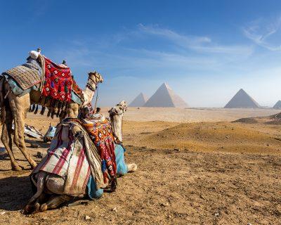 Egypt. Cairo - Giza. General view of pyramids.jpg