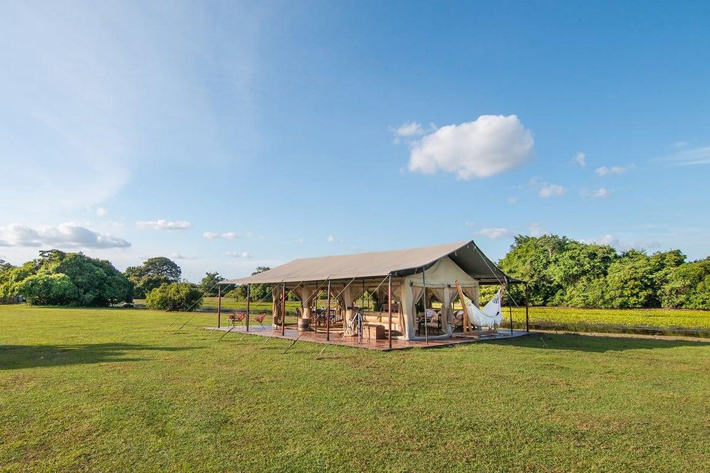 Luxury Safari to Los Llanos 4