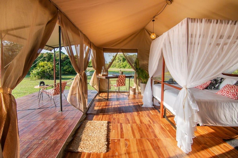 Luxury Safari to Los Llanos 6