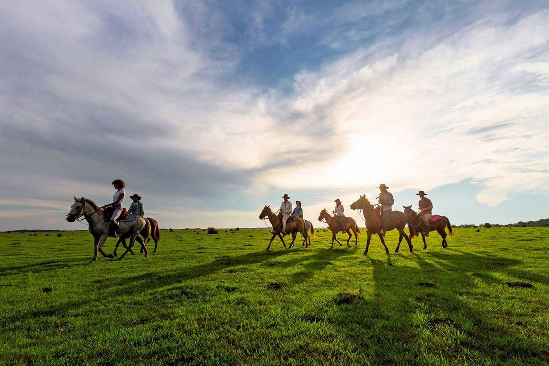 Luxury Safari to Los Llanos 9