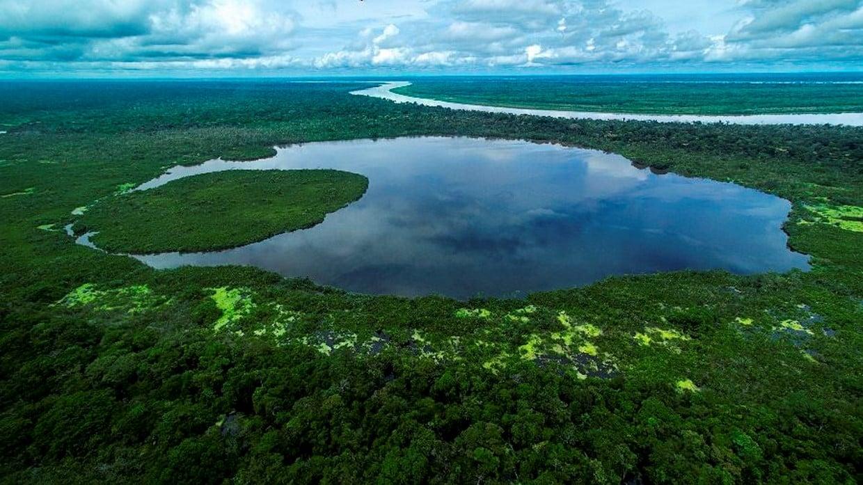 Amazon Rainforest Discovery Tour 3