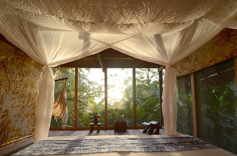 Amazon Rainforest Discovery Tour 6