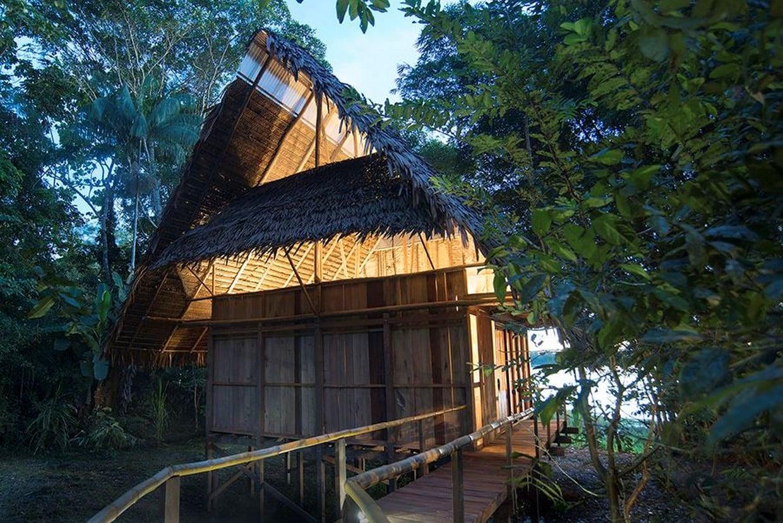 Amazon Rainforest Discovery Tour 8