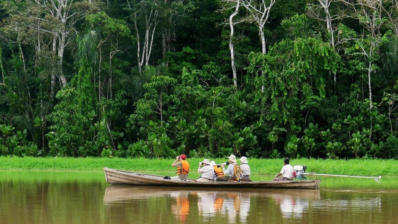 Amazon Rainforest Discovery Tour 9