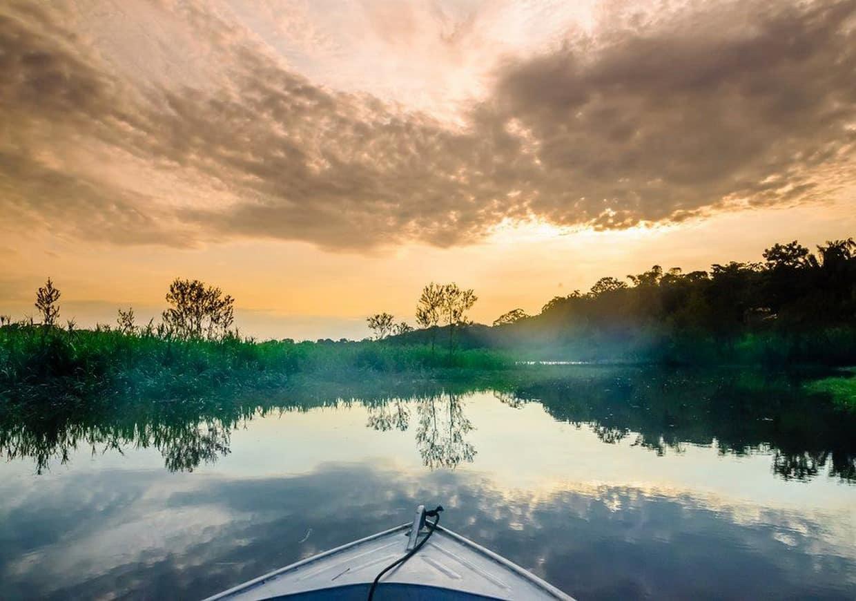 Amazon Rainforest Discovery Tour 1