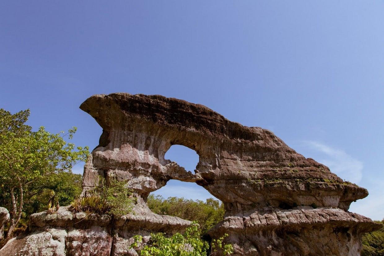 Discover San José del Guaviare 6