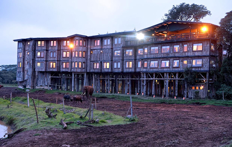 5 Days Aberdare, Lake Nakuru and Masai Mara Safari 2