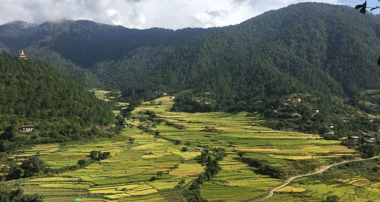 Bhutan In-Depth Tour + Domestic Flight 8