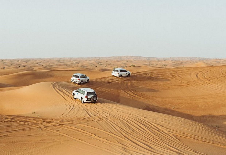 Morning Desert Safari 2
