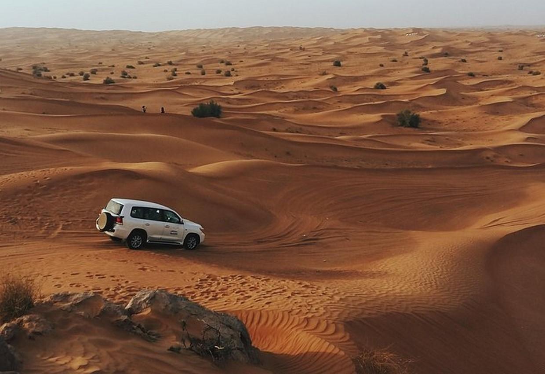Morning Desert Safari 8