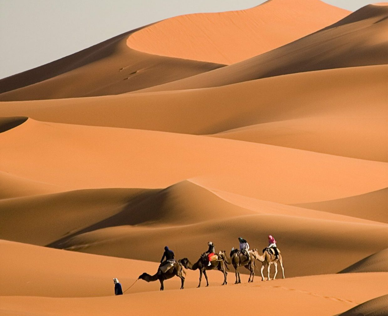 Sahara Desert Photo Tour 4